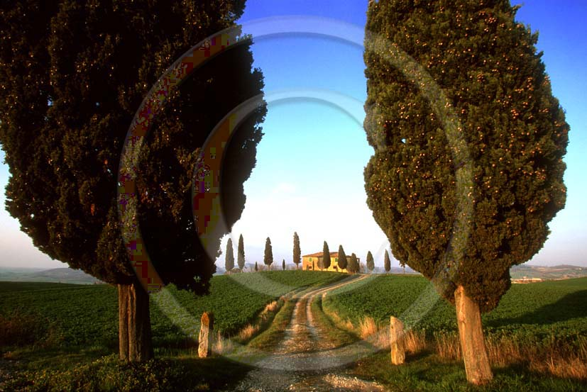 2001 - Landscapes of cipress and farm in spring, near Pienza village, Orcia valley, 20 miles south the province of Siena.