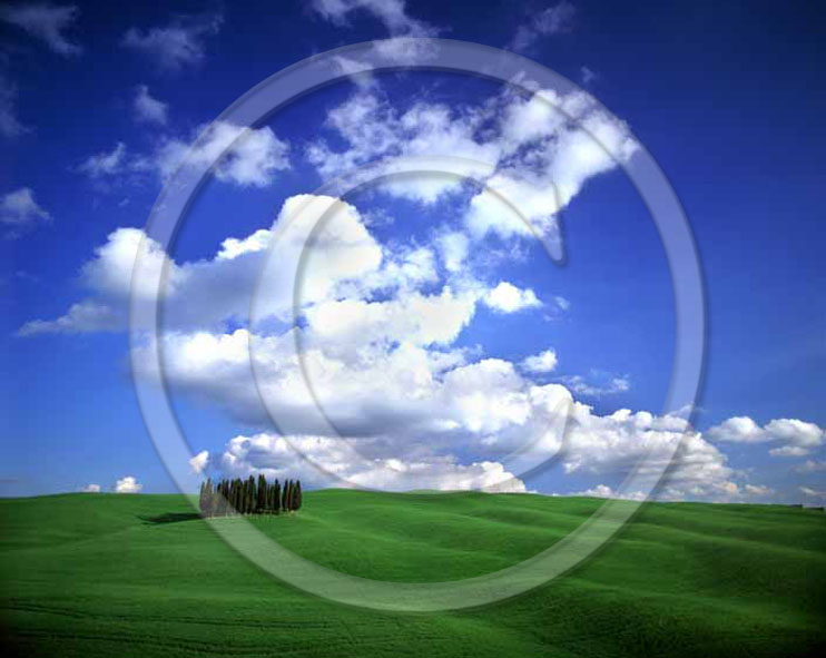 2000 - Landscapes of farm and cipress with field of bead in spring, near Orcia village, 16 miles south province of Siena.