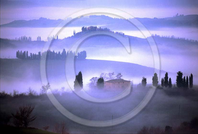 2000 - Landscapes of farm and cipress with fog in winter, Montemori place, near Asciano village, Cret land, 20 miles south the province of Siena.