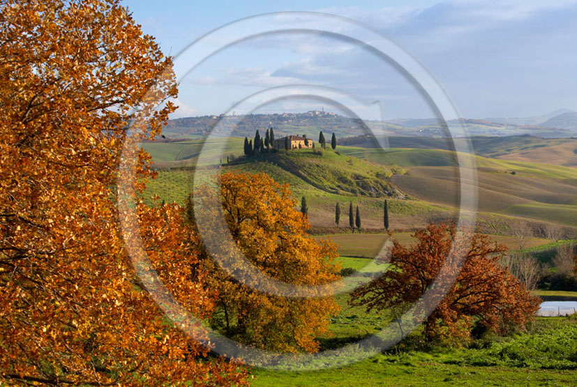 2005 - Landscapes of farm and cipress with Pienza medieval village in background on early morning in autumn, near S.Quirico village, 19 miles south province of Siena.