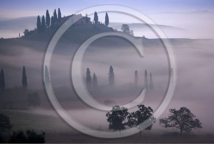 2006 - Landscapes of farm and cipress with fog on sunrise in winter, near S.Quirico village, 18 miles south province of Siena.