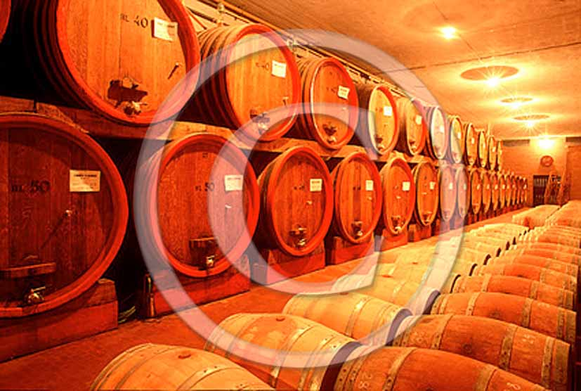 1992 - Traditional cellars with wine cask in Chianti land.