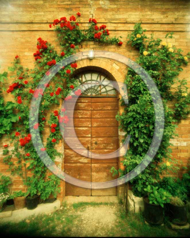 2000 - View of tuscan door with roses.