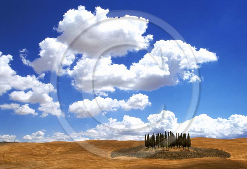 2001 - Landscapes of cipress with white clouds in summer, near S.Quirico village, Orcia valley, 14 miles south the province of Siena.