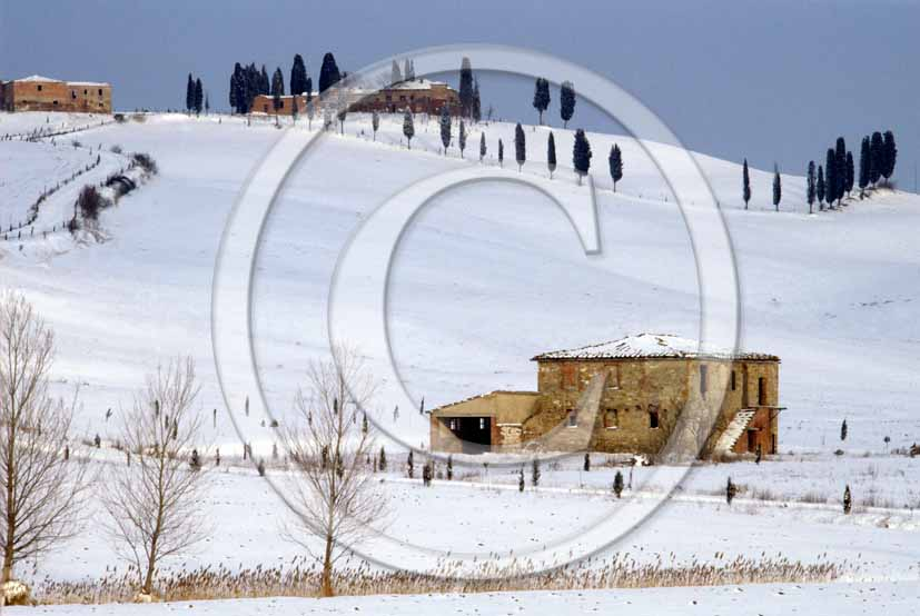 <P align=center>1987 - Landscapes of Crete Senesi and farm under the snow in winter, Leonina place, near Taverne Arbia village, 10 miles south the province of Siena.</P>