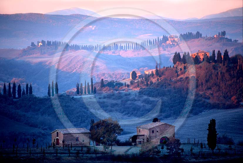 2001 - Landscapes of farm and cipress line on sunrise in winter, near Montemori place, Arbia valley, near Asciano village, 17 miles south the province of Siena.