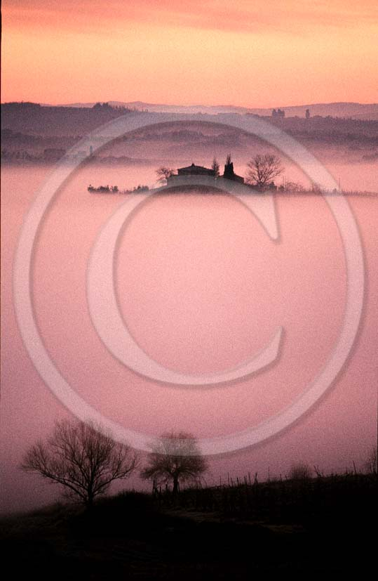 1999 - Landscapes of farm with fog on sunrise in winter, near Quercegrossa village, 8 miles south the province of Siena.