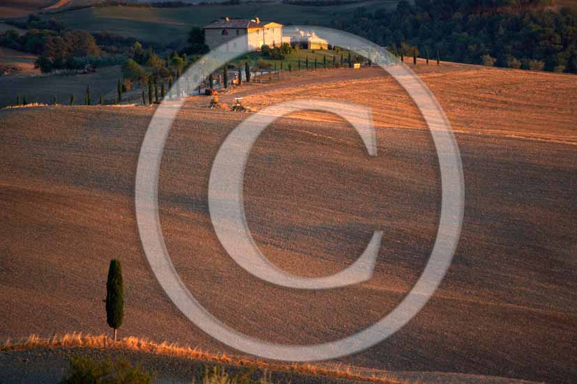 2006 - Landscapes with cipres and farm in autumn on sunset, Terrapile place, Orcia Valley, near Pienza village, 26 miles south the province of Siena.