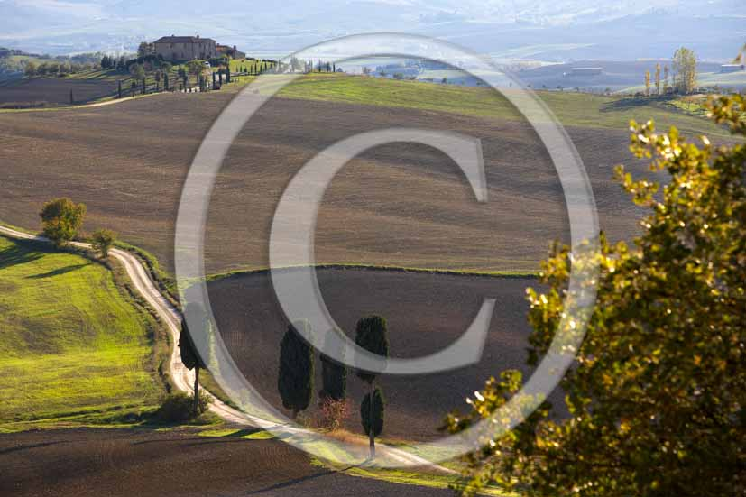 2006 - Landscapes of field of bead with cipress and farm in winter, Terrapile place, Orcia Valley, near Pienza village, 26 miles south the province of Siena.