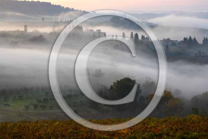 2006 - Landscapes with fog of yellow vineyards in autumn in early morning, a bit before sunrise,  near Barberino Val Elsa, Chianti valley, 15 miles south the province of Florence.