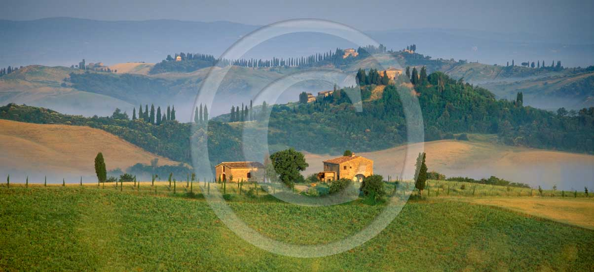 <P>&nbsp; 2001 - Panoramic&nbsp;view of farm and cipress line with fog on sunrise in spring, Montemori place, Arbia valley, near Asciano village, 17 miles south the province of Siena.</P>