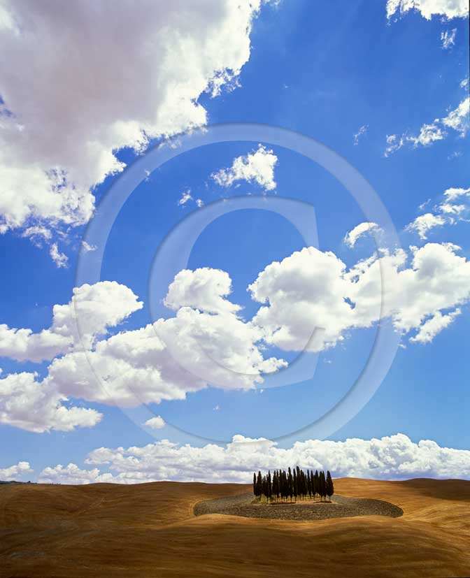 2001 - Landscapes of field of bead with cipress and white clouds in summer, near S.Quirico village, Orcia valley, 14 miles south the province of Siena.