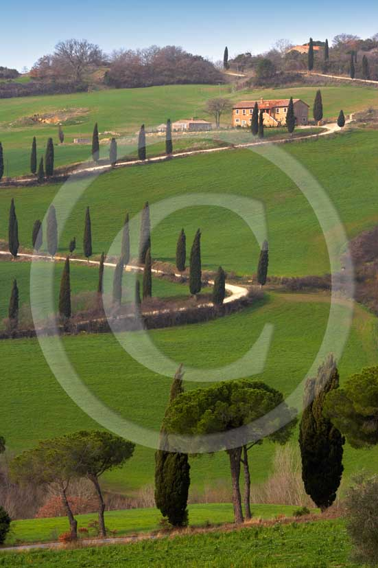 2007 - Landscapes of farm and cipress line in spring, near Foce village, Orcia valley, 31 miles south province of Siena.