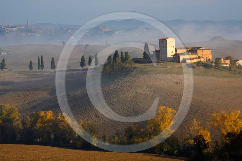 2007 - Landscapes of farm and cipress line with fog on sunrise in autumn, Poggio Prati village, near Ville di Corsano place, Crete Senesi land, 14 miles est Siena province.