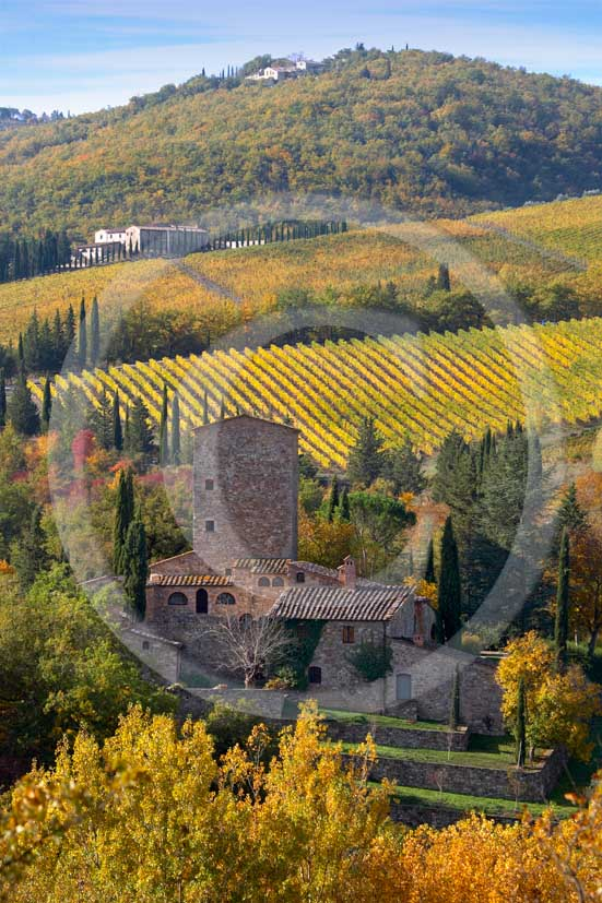 2007 - Landscapes of yellow and red vineyards with Grignano farm in autumn on early morning, near Panzano, Chianti valley, 23 miles south the province of Florence.