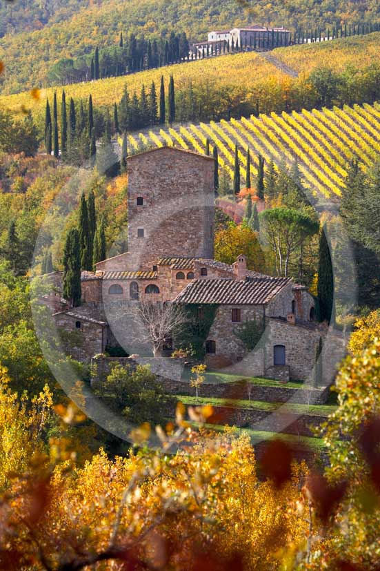 2007 - Landscapes of yellow and red vineyards with Grigliolino farm in autumn on early morning, near Panzano, Chianti valley, 23 miles south the province of Florence.