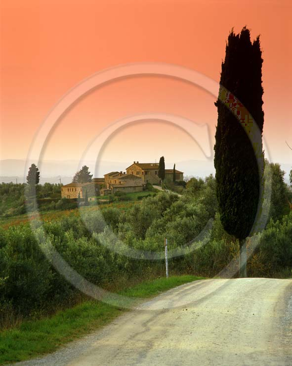 2001 - Landscapes of farm with cipress on sunset in autumn, near Castellina village, Chanti land, 17 miles north the province of Siena.