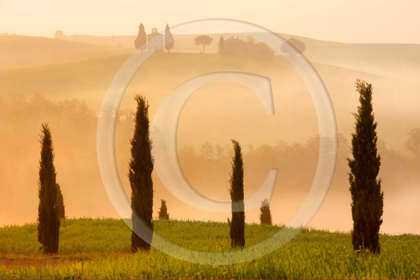2008 - Landscapes with farm, country chapel and cipress on early foggy morning in spring, near S.Quirico Orcia village, Orcia valley, 18 miles south the province of Siena.
