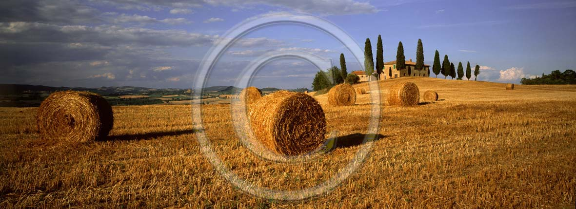 2001 - Panoramic view of farm, cipress and rolls of bead in summer, near Pienza village, Orcia valley, 21 miles south province of Siena.