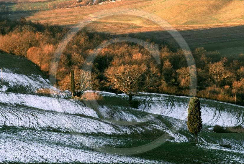 2000 - Landscapes of field of bead in winter, near Mucigliani place, Crete Senesi land, 13 miles south province of Siena.