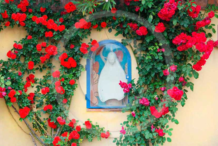 2011- Little Virgin Mother chapel with red rose.