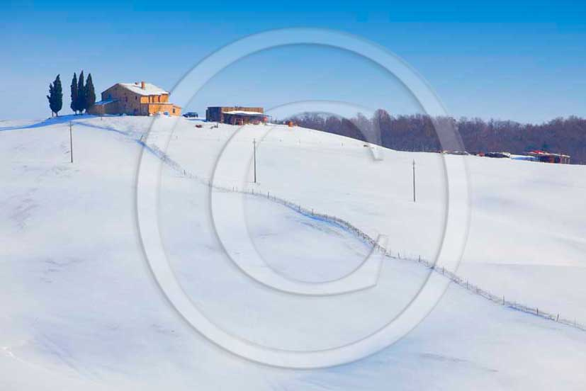 2012 - View of farm, cypress line with snow in winter in Orcia valley.