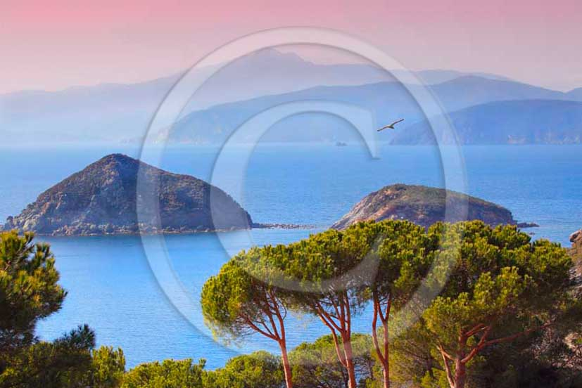 2012 - View of Innamorata Gulf - Beach, Elba Island, Tirreno sea.