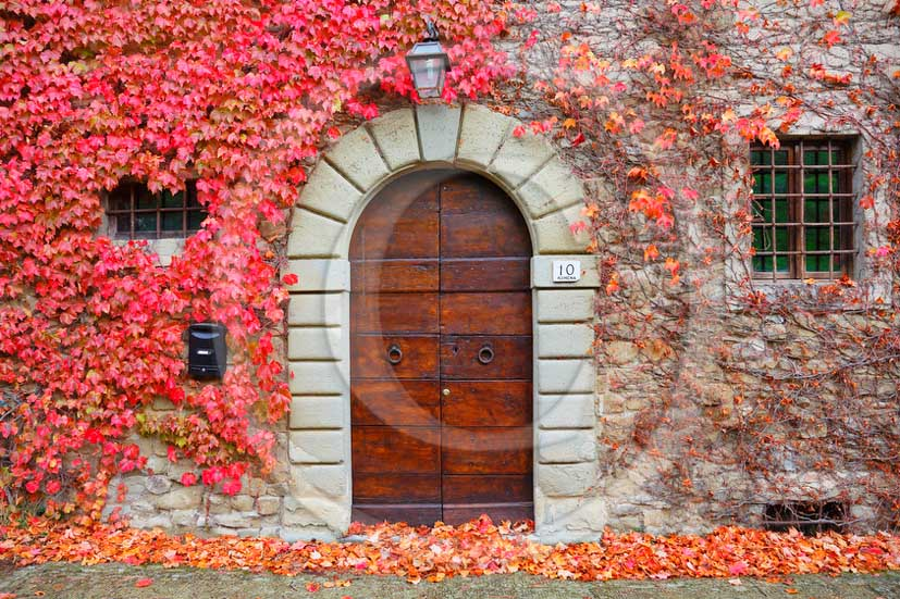 2012 - Traditional door with red and yellow vineyards.