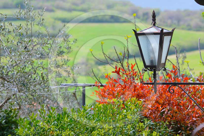 2013 - Traditional country lamp with red vineyards.