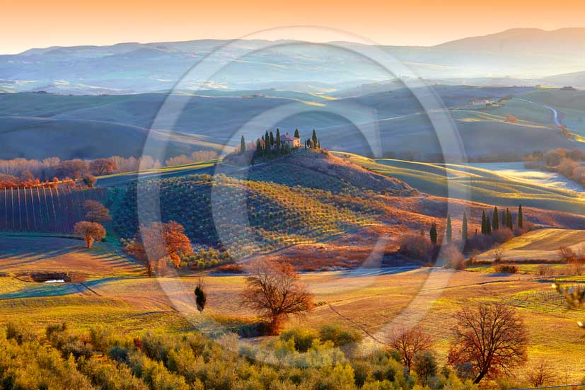 2013 - View on late afternoon in autumn of farm and cypress in Orcia valley near san Quirico d'Orcia village.