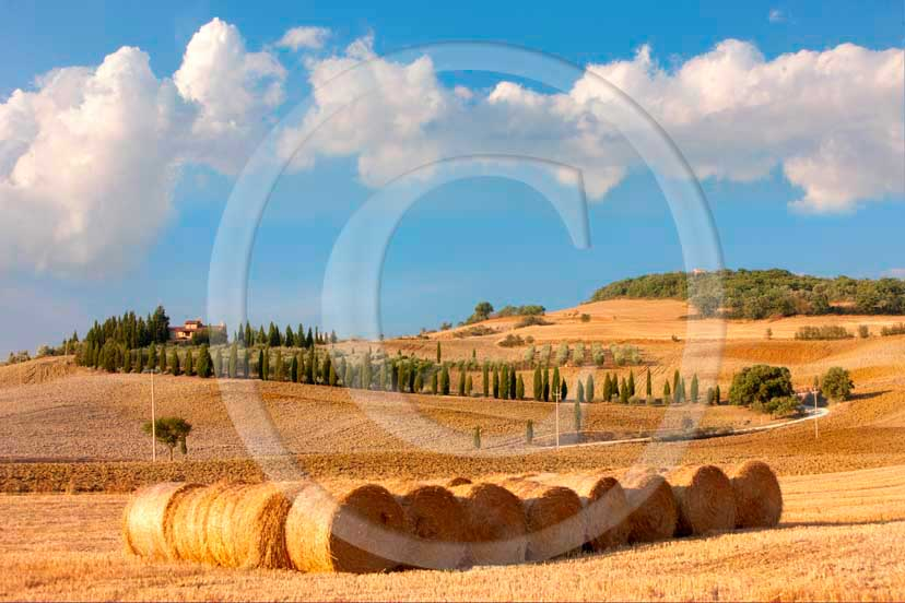 2008 - Landscapes of rools of bead with white clouds and blue sky on late afternoon in summer, near Pienza medieval village, Orcia valley, 27 miles south Siena province.