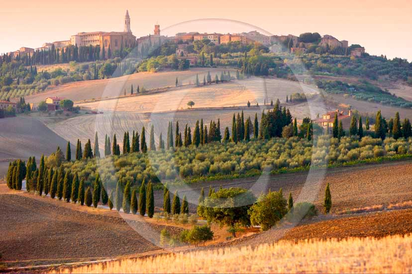 2008 - A view of Pienza medieval village with cypress line and farm on