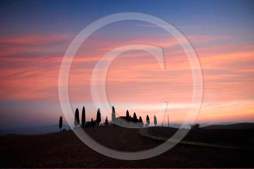 2008 - Landscapes and silhouette of farm and cipress before sunrise in autumn, near Pienza village, 22 miles south province of