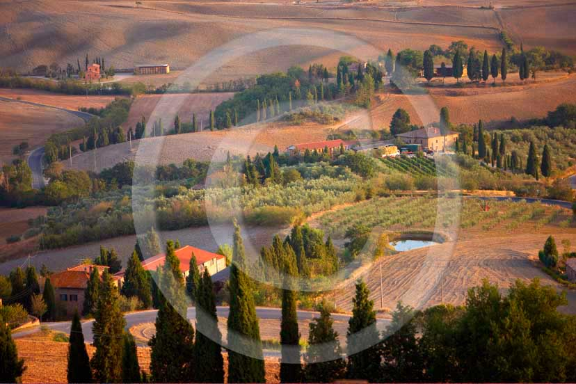 2008 - Landscapes with farm and cypress on late afternoon in summer, in Pienza medieval village, Orcia valley, 20 miles