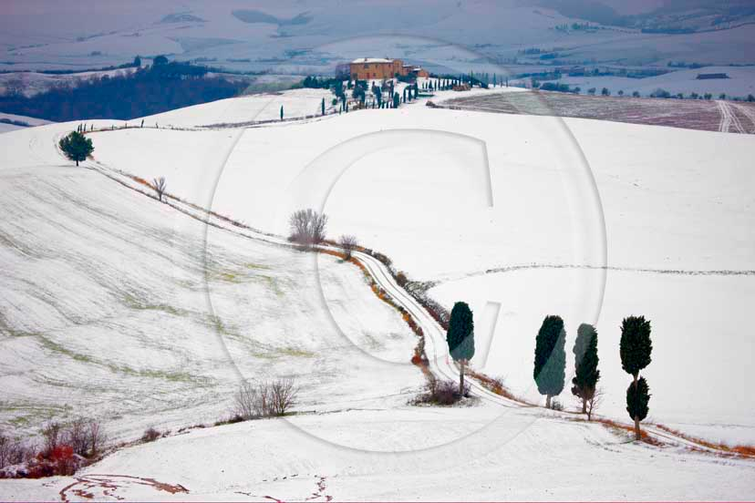 2009 - Landscapes of field of bead with cipress and farm with snow in winter, Terrapile place, Orcia Valley, near Pienza village, 26 miles south the province of Siena.