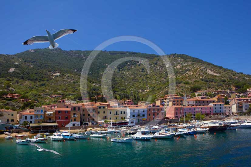 2009 - View of the port of Isle of Giglio on summer, Maremma land, 80 miles south the province of Grosseto.