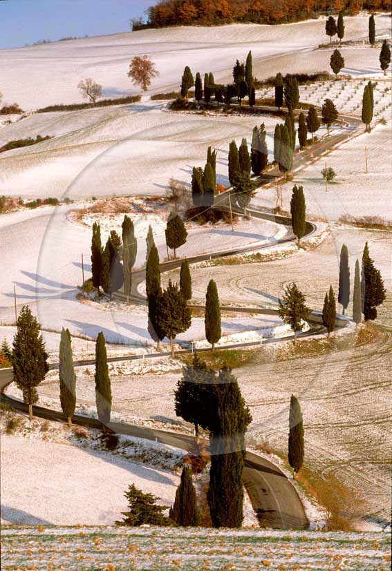 1999 - Landscapes of farm and cipress line with snow in winter, near Monticchiello village, Orcia valley, 25 miles south the province of Siena.