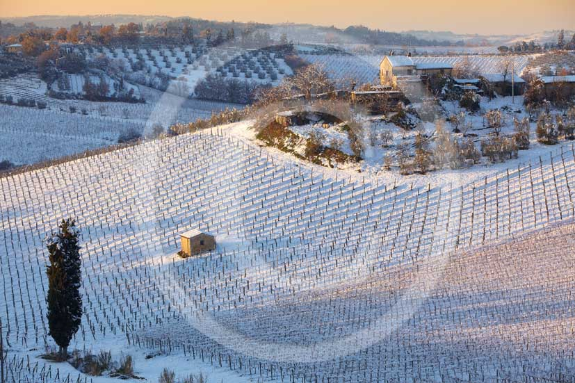 2009 - Surrounding country viewer of farm, cypress and vineyards under the snow in winter on late afternoon, near San Gimignano medieval village, Chianti land, 21 miles north Siena province.