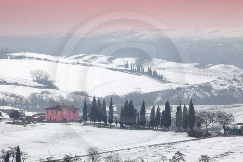 2010 - Landscapes of farm and cipress line with snow on sunrise in winter, near S.Quirico village, Orcia valley, 23 miles south province of Siena.