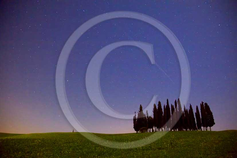 2011 - Night view with stars of cypress tuscan skyline in Orcia valley.