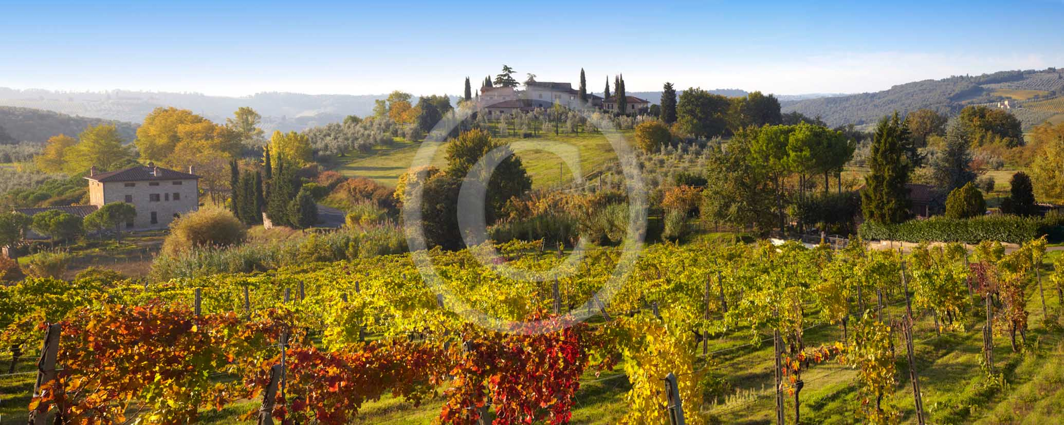 2011 - Panoramic view on sunrise with fog of vineyards and farm near San Gimignano village in Chianti Classico land.