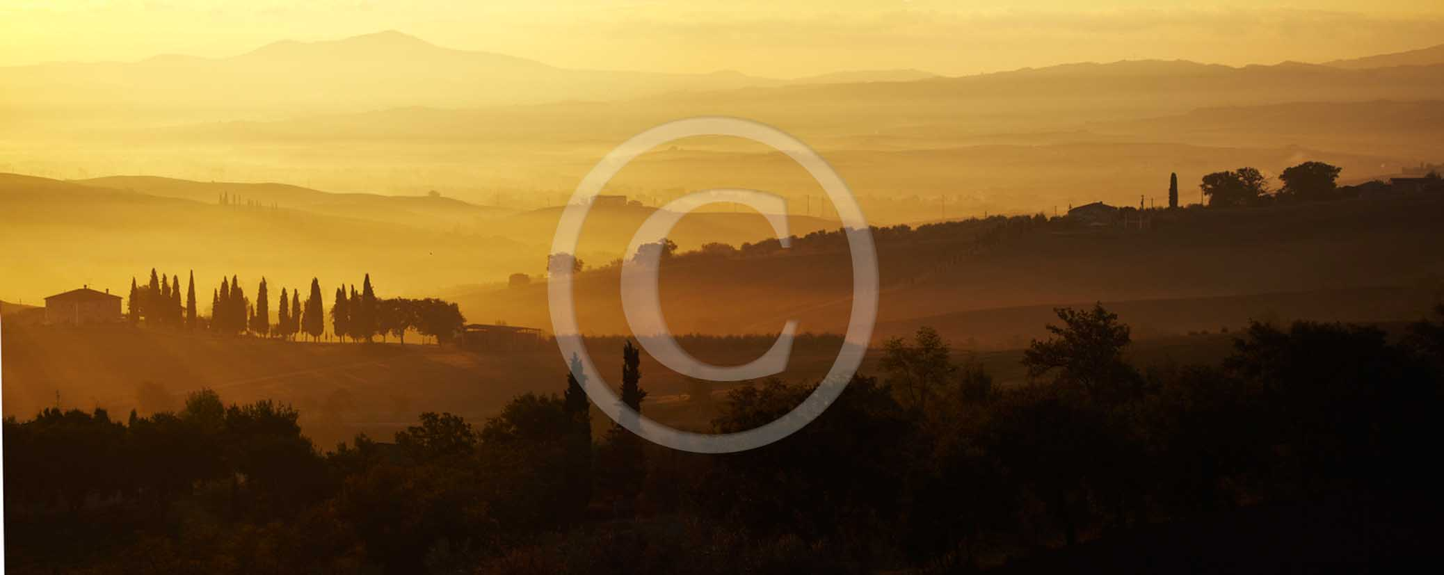 2011 - Panoramic view of cipress and tuscan skyline with farm at sunrise in Orcia valley.