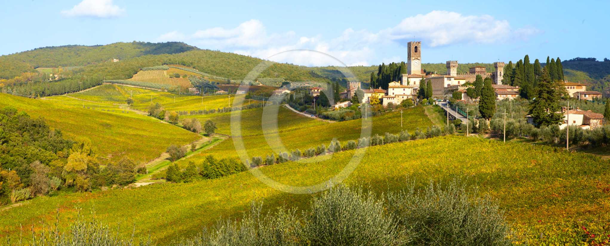 2011 - Panoramic view of vineyard in Badia a Passignano abbay in Chianti Classico land.