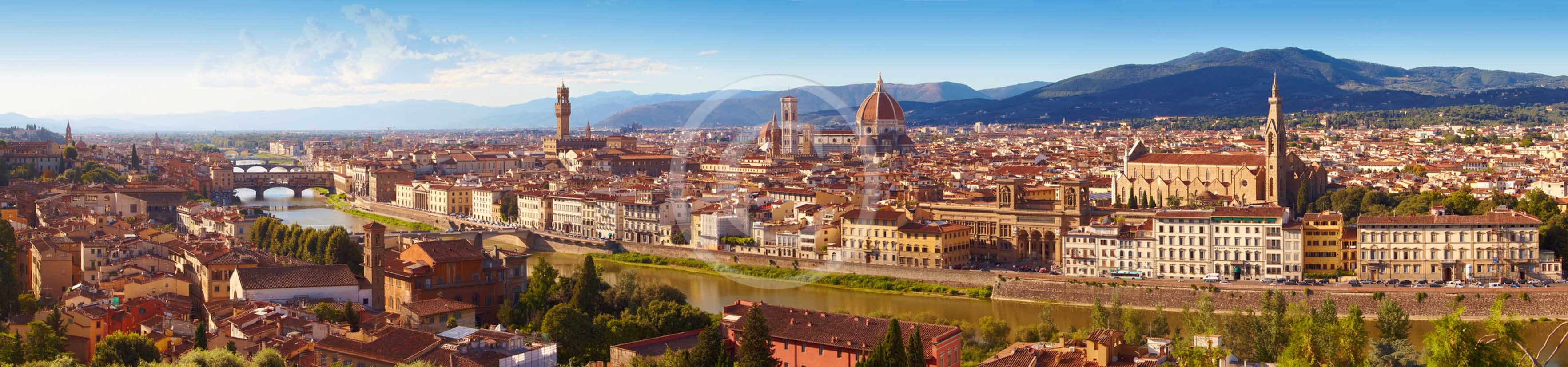 2011 - Panoramic view of the town of Florence.