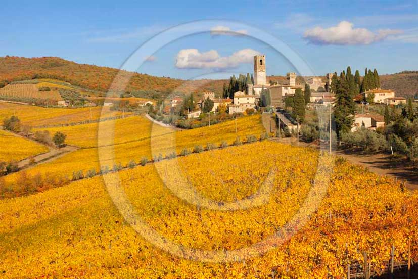 2011 - View of yellow red orange green colorated vineyards in autumn at Badia Passignano Abbay in Chianti Classico land.