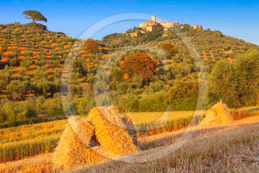 2011 - Surrounding view of the country of the village of Capalbio in Maremma land.